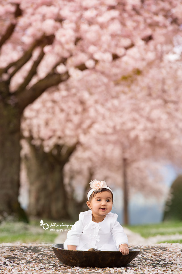 vancouver_baby-photography_blossom_baby