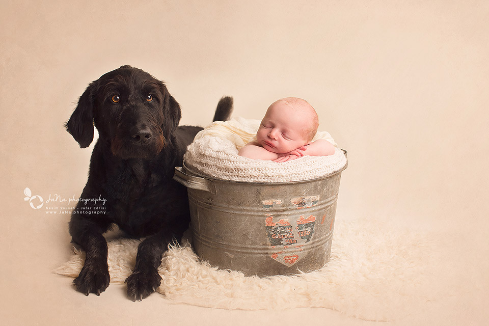Vancouver_newborn_photographer_jana_dog