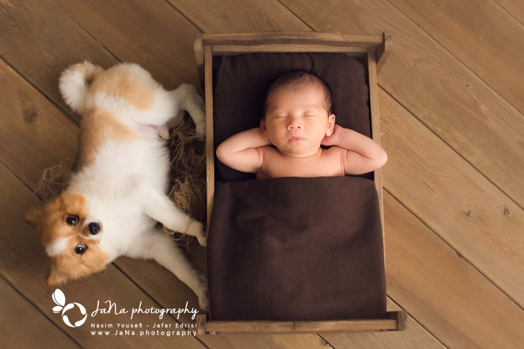 Richmond Newborn photography | Arthur