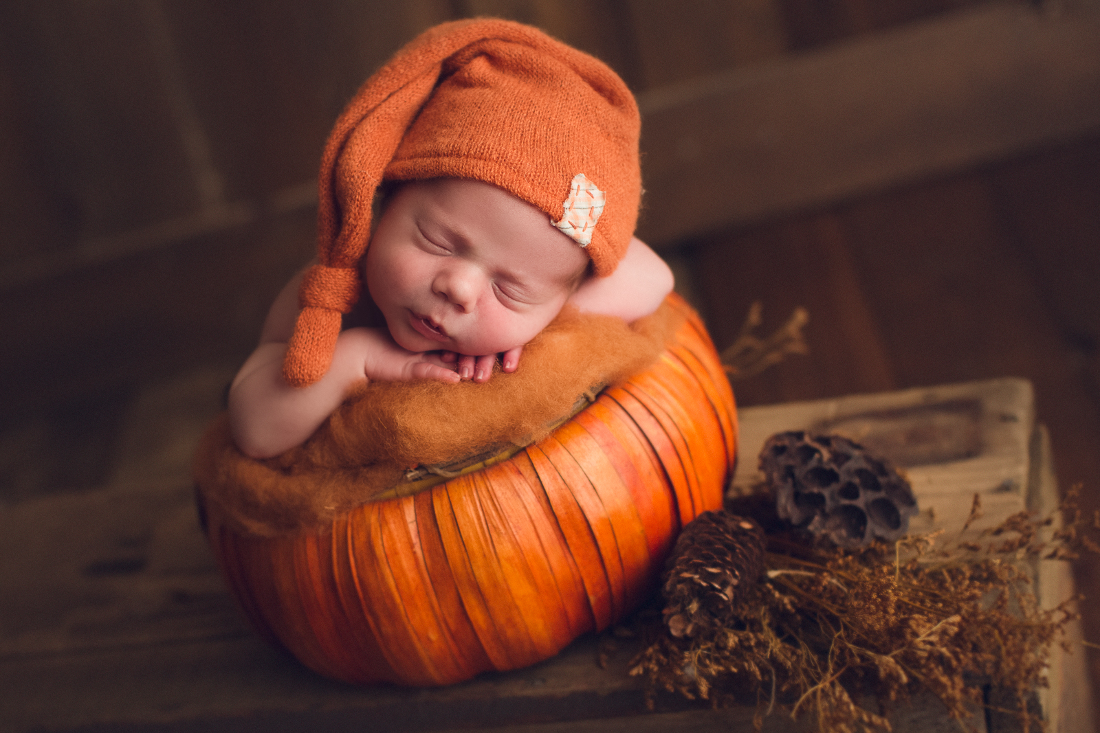 vancouver burnaby newborn photography - luca - orange - pumpkin