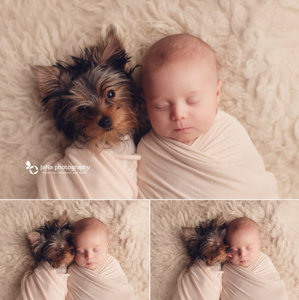 Newborn photography and dog