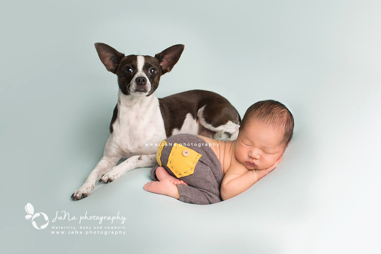 baby boy with dog in a blue background | jana photography