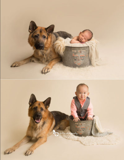 newborn-baby-boy-dog-bucket