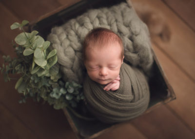 baby boy full wrap in a green brown bed | jana newborn photography