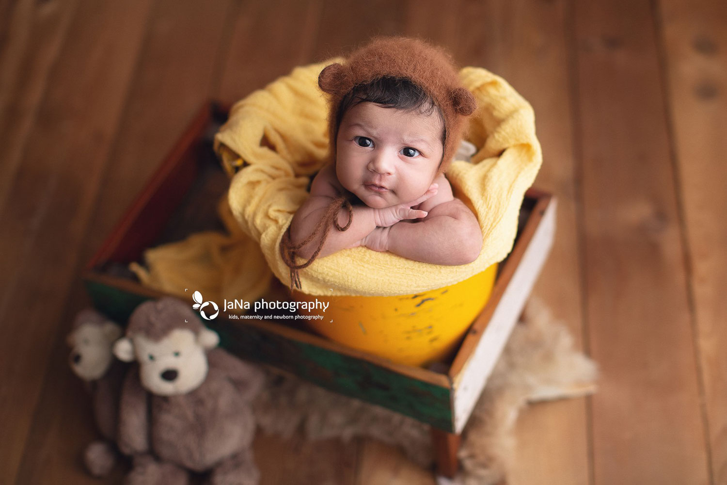 open eyes newborn baby boy in a yellow bucket - jana photography Vancouver bc