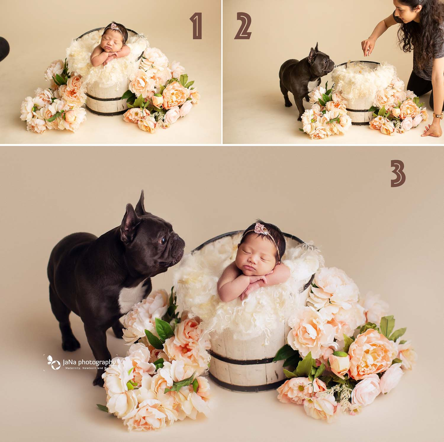 newborn baby girl posing in a bucket close to her dog | safety