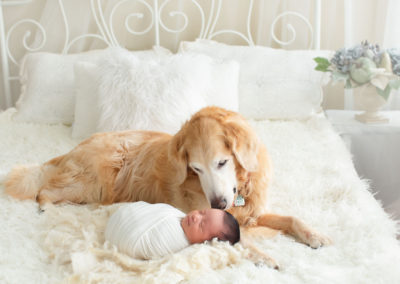 newborn baby boy and a dog | jana newborn photography