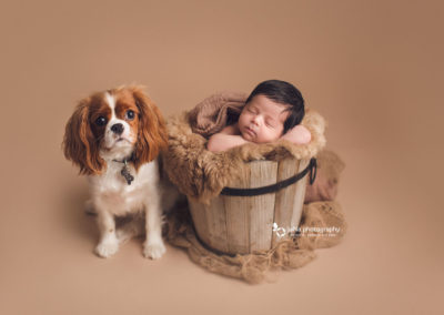 newborn-baby-girl-with-her-dog