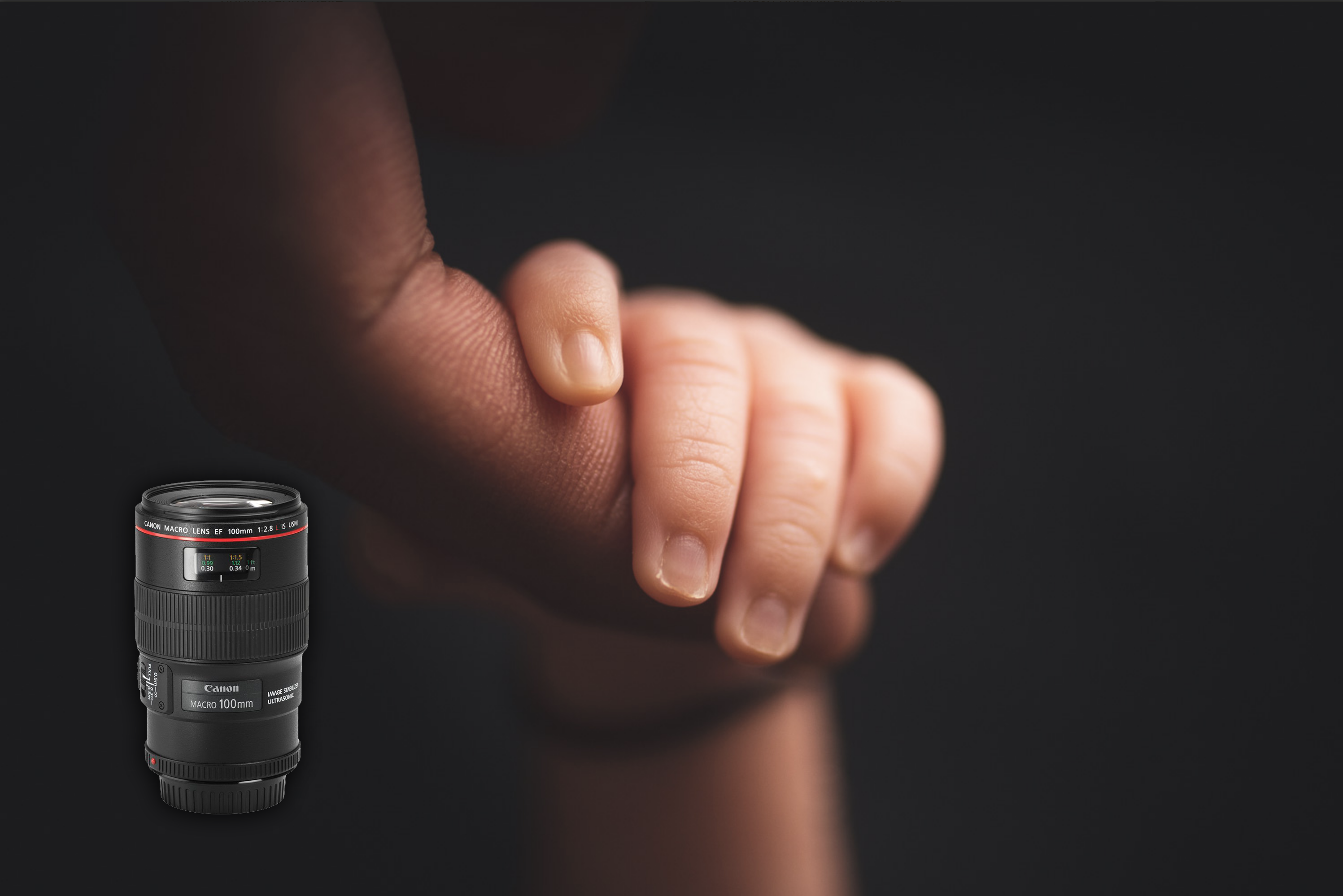 best macro lens for newborn photography - detail - baby and dad hand