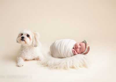 newborn photography - baby-girl with dog