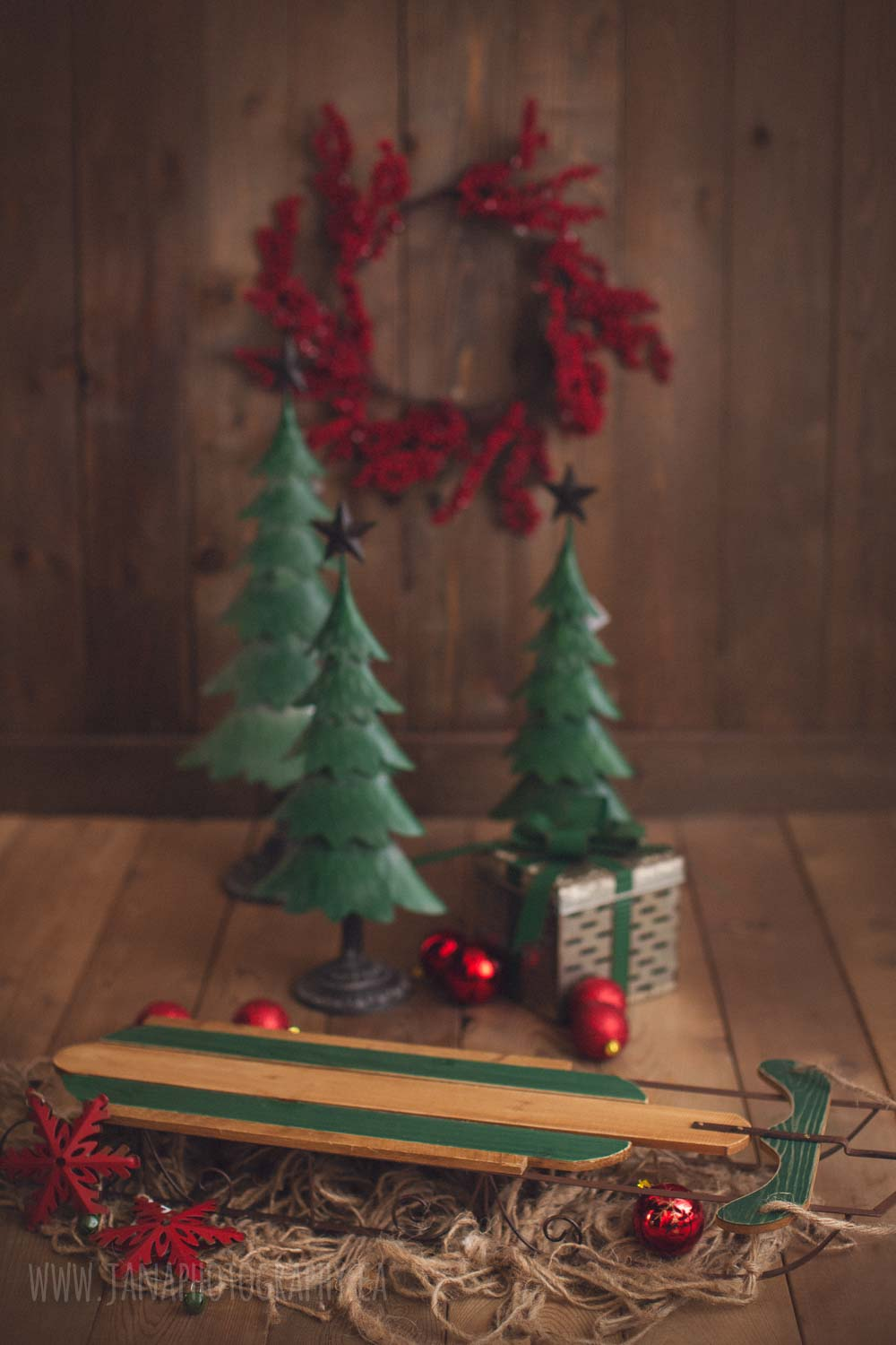 holiday mini session - brown and green setup