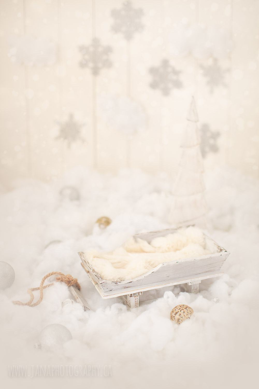 holiday mini session - white setup