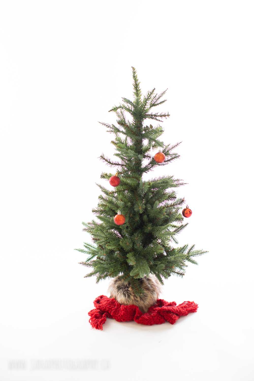 holiday mini session - christmas tree