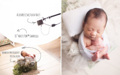 What is the best light for Newborn photography?